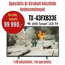 Panasonic TX-43FX633-DEMO  LED TV   DEMO21
