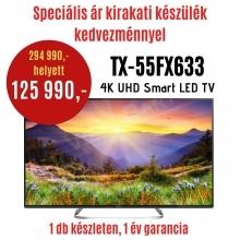 Panasonic TX-55FX633E DEMO TV,SAT 140 cm   DEMO21